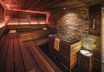 commercial-professional-sauna-7
